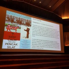 Pencak Silat from social aspects